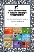 Golden Border Retriever 20 Milestone Challenges