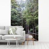 Fotobehang vinyl - Gang door bomen in bos Big Sur in Verenigde Staten breedte 175 cm x hoogte 260 cm - Foto print op behang (in 7 formaten beschikbaar)