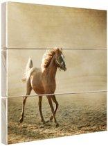 Veulen afgedrukt Hout 20x20 cm - klein - Foto print op Hout (Wanddecoratie)