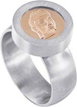 Quiges RVS Schroefsysteem Ring Zilverkleurig Mat 17mm met Verwisselbare Rosé Boeddha 12mm Mini Munt