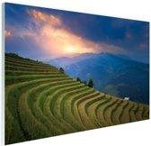 Rijstveld zonsondergang Glas 90x60 cm - Foto print op Glas (Plexiglas wanddecoratie)