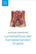 Anatomie Lernkarten: Lymphabfluss der harnableitenden Organe