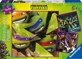 De vier Ninja Turtles