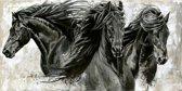 Horka Wenskaart Elise Paard Zwart 12,5 X 18 Cm