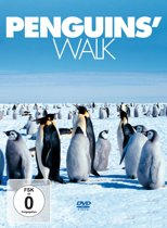 Penguin's Walk