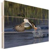 Slobeend vliegt weg uit het water Vurenhout met planken 120x80 cm - Foto print op Hout (Wanddecoratie)