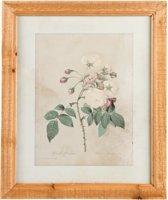 Clayre & Eef Schilderij 33x2x40 cm
