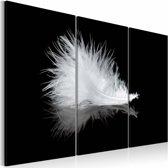 Schilderij - Veertje, Zwart-Wit,  3luik