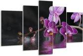 Glasschilderij Orchidee   Paars, Zwart, Wit   170x100cm 5Luik   Foto print op Glas    F001232