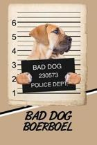Bad Dog Boerboel