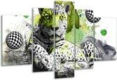 Glasschilderij Natuur | Groen, Zwart, Wit | 170x100cm 5Luik | Foto print op Glas |  F003124