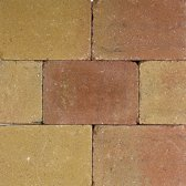 25 stuks! Pebblestone lizard 20x30x6 cm Gardenlux