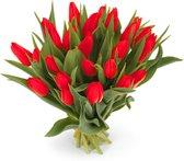 25 rode tulpen boeket