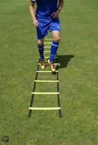 Loopladder, speedladder, agility ladder met vaste treden 6 meter