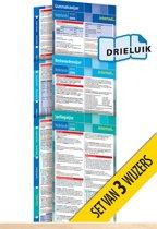 Wijzers Nederlands - nieuwe editie (pakket van 3) uitklapkaarten