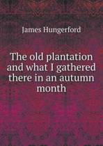 The Old Plantation and What I Gathered There in an Autumn Month