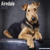 Airedale Calendar 2020
