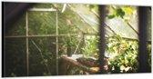 Dibond –Greenhouse– 200x100cm Foto op Aluminium (Wanddecoratie van metaal)
