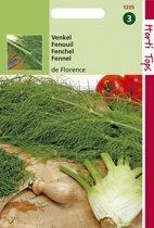Hortitops Zaden - Venkel De Florence