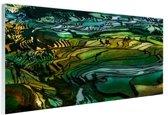 Rijstterras bij Yuanyang China Glas 120x80 cm - Foto print op Glas (Plexiglas wanddecoratie)
