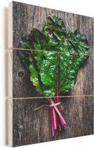 Snijbiet op een rustieke houten achtergrond Vurenhout met planken 60x90 cm - Foto print op Hout (Wanddecoratie)