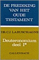 DEUTERONOMIUM 1 B