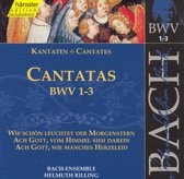 J. S. Bach: Cantatas BWV 1-3 / Nielsen, Auger, Rilling