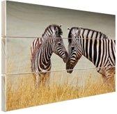 Zebras  Hout 80x60 cm - Foto print op Hout (Wanddecoratie)