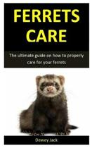 Ferret Care: The ultimate guide on how to properly care for your ferrets