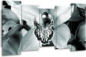 Schilderij | Canvas Schilderij Bloem | Grijs, Groen | 150x80cm 5Luik | Foto print op Canvas
