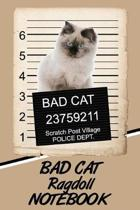 Bad Cat Ragdoll Notebook