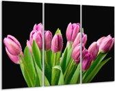 Glasschilderij Tulpen | Roze, Zwart, Groen | 120x80cm 3Luik | Foto print op Glas |  F005788