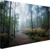 Een mistig pad door het bos Canvas 30x20 cm - Foto print op Canvas schilderij (Wanddecoratie)