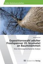 Expositionswahl Adulter Frostspanner (O. Brumata) an Baumstammen