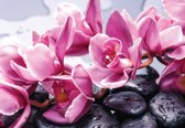 Fotobehang Flowers Orchids Stones Zen | XXXL - 416cm x 254cm | 130g/m2 Vlies