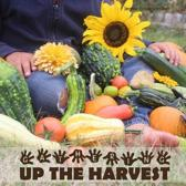 Gathering Up The Harvest