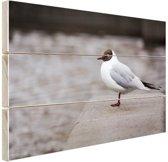 Meeuw Hout 60x40 cm - Foto print op Hout (Wanddecoratie)
