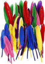 Veren, l: 13 cm, diverse kleuren, 48stuks