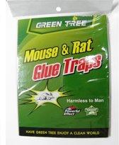 Muizenval Glue Traps - Kleefstof lijm - Muizen en Knaagdieren