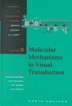 Molecular Mechanisms in Visual Transduction