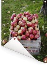 Houten doos met verse appels Tuinposter 60x80 cm - Tuindoek / Buitencanvas / Schilderijen voor buiten (tuin decoratie)