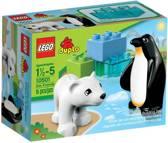 LEGO DUPLO Ville Dierentuinvrienden 10501