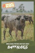 Unbelievable Pictures and Facts About Buffaloes
