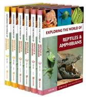 Exploring the World of Reptiles and Amphibians