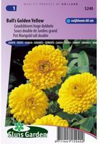 Sluis Garden Goudsbloem Balls Golden Yellow