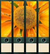 Rugetiket Sunflower