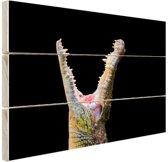 Close-up krokodil Hout 120x80 cm - Foto print op Hout (Wanddecoratie)