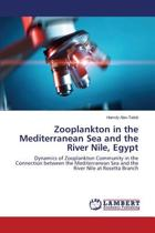 Zooplankton in the Mediterranean Sea and the River Nile, Egypt