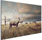 FotoCadeau.nl - Afrikaanse dieren op de savanne Aluminium 60x40 cm - Foto print op Aluminium (metaal wanddecoratie)