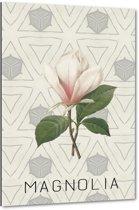 Magnolia I - 40x60 cm - Anne Waltz - PixaPrint - WE-0069-1